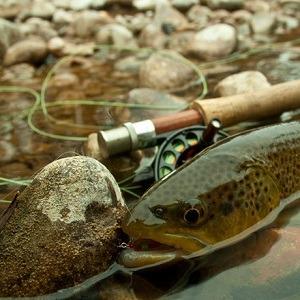 Kens-Anglers-IMG_3216b