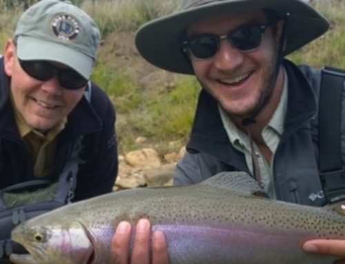 Fishing Tips That Will Make Trout Fishing Easy and Fun